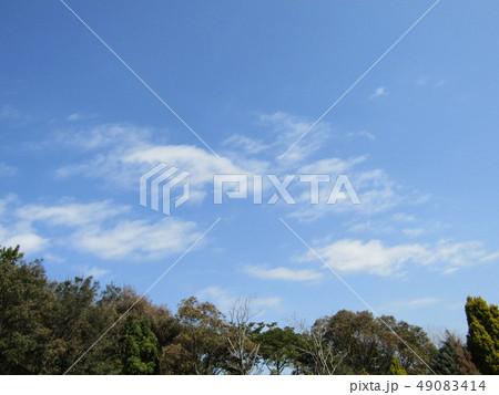 3月の青い空と白い雲 49083414