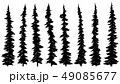 Set of silhouettes of thin tall firs. 49085677