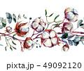 水彩画 シームレス コットンのイラスト 49092120