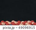 牡丹 背景素材 和のイラスト 49096915