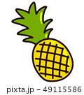パイナップル パイン フルーツのイラスト 49115586