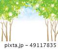 木漏れ日 新緑 青空のイラスト 49117835