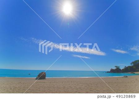 桂浜のビーチ 49120869