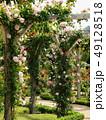 ローズガーデンの薔薇の小径 49128518