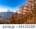 富士山 唐松 朝の写真 49133288