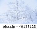 《北海道》霧氷・厳冬の北海道 49135123