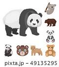 くま クマ 熊のイラスト 49135295