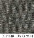 49137614