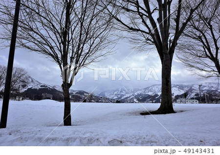 長野県の雪景色。一面に広がる白い雪 49143431