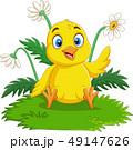 鳥 マンガ 漫画のイラスト 49147626