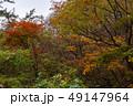 白神山地 津軽国定公園 十二湖172 49147964