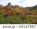 白神山地 津軽国定公園 十二湖175 49147967