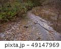 白神山地 津軽国定公園 十二湖176 49147969