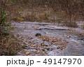白神山地 津軽国定公園 十二湖177 49147970