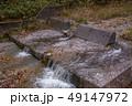 白神山地 津軽国定公園 十二湖179 49147972