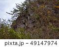 白神山地 津軽国定公園 十二湖181 49147974