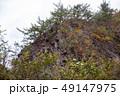 白神山地 津軽国定公園 十二湖182 49147975