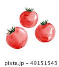 ミニトマト プチトマト トマトのイラスト 49151543
