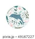 いるか イルカ 海豚のイラスト 49167227