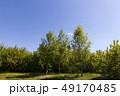 景色 風景 空の写真 49170485