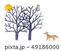 白バック 木 枯れ木のイラスト 49186000