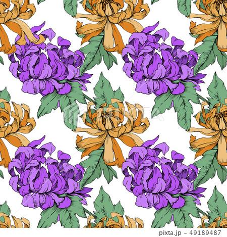 Vector Chrysanthemum floral botanical flowers. Engraved ink art. Seamless background pattern. 49189487