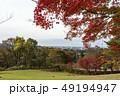 奥卯辰山県民公園 秋 公園の写真 49194947