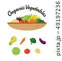 白バック 野菜 有機野菜のイラスト 49197236