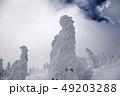 樹氷 49203288