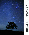 冬の星空 49203294