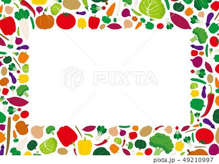 フレッシュ野菜 フレーム イラスト 49210997