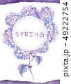 透明水彩 水彩画 紫陽花のイラスト 49222754
