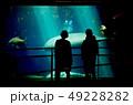 水族館でスナメリを眺める男と女 49228282