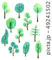 樹木 樹 ツリーのイラスト 49241502