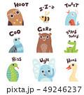 動物 熊 ベクトルのイラスト 49246237
