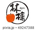 林檎 筆文字 appleのイラスト 49247388