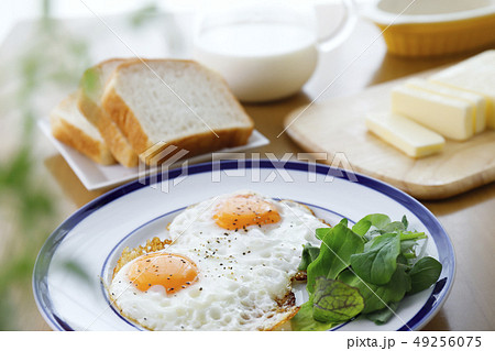 目玉焼きの朝食 49256075