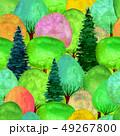 パターン 柄 模様のイラスト 49267800