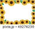 ひまわり 夏 花のイラスト 49276230