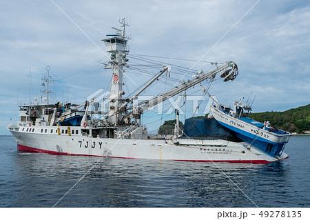 カツオ、マグロまき網漁船 第78光洋丸 49278135