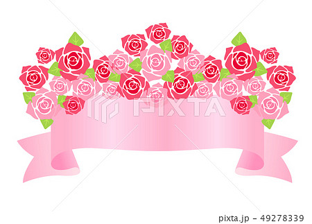 薔薇 49278339