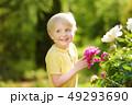 花 少年 芽の写真 49293690