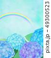 紫陽花 49300523