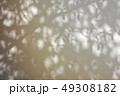Abstract shadow background of natural leaves tree  49308182