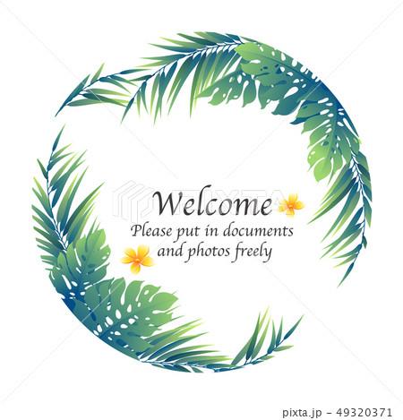 熱帯植物の飾り枠, 49320371