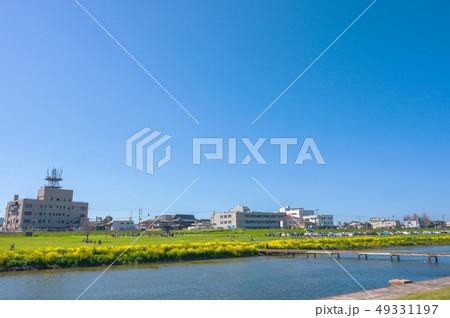 春の遠賀川と菜の花【福岡県】 49331197