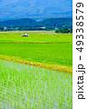 農村 風景 景色の写真 49338579