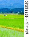 農村 風景 景色の写真 49338580