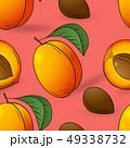 アプリコット アンズ 杏のイラスト 49338732