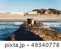 はじめての海。海辺で戸惑う黒い犬。 49340778